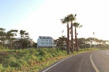 제주도 한적한 바닷가마을/올레길5코스/감성과편안함/바당꽃-301호(복층)