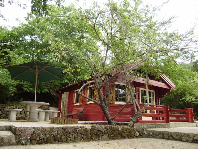 Waldhüttte  - El Sauzal - House