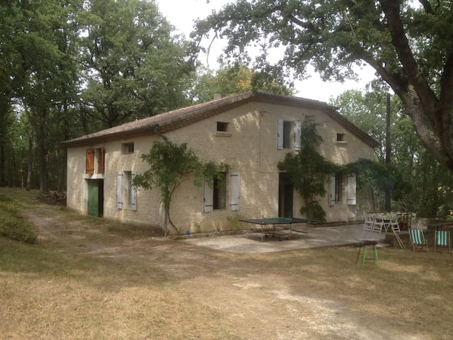 Big typical house in Gers in a private wood - Avensac