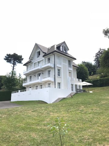 Exclusive modern villa in Evian.