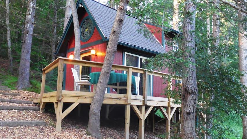 Stream Dream Tiny House