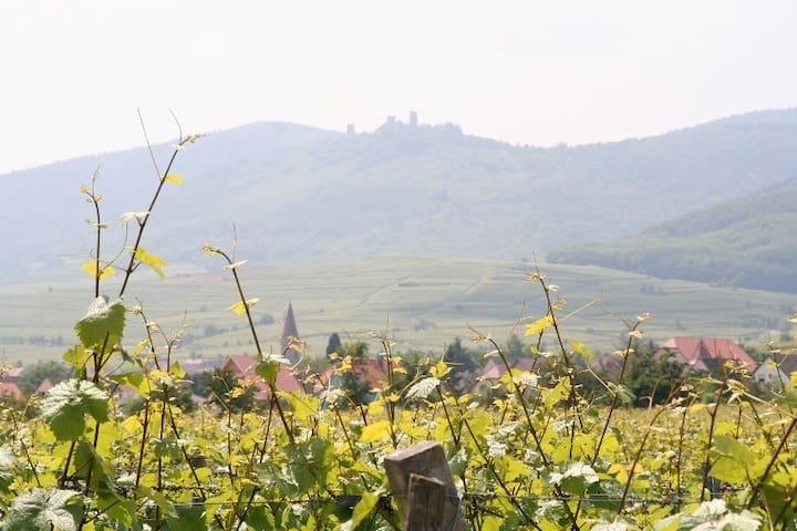 Au pied des vignes : Gîte de Pierre à Jade