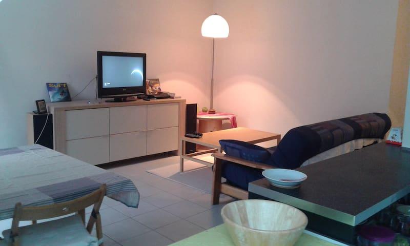 Appartement 60m² avec terrasse centre Alsace - Erstein - Apartament