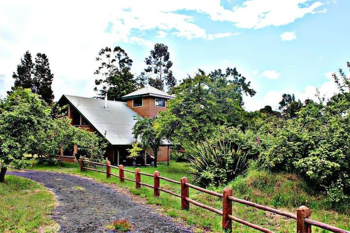 Casa Volcan