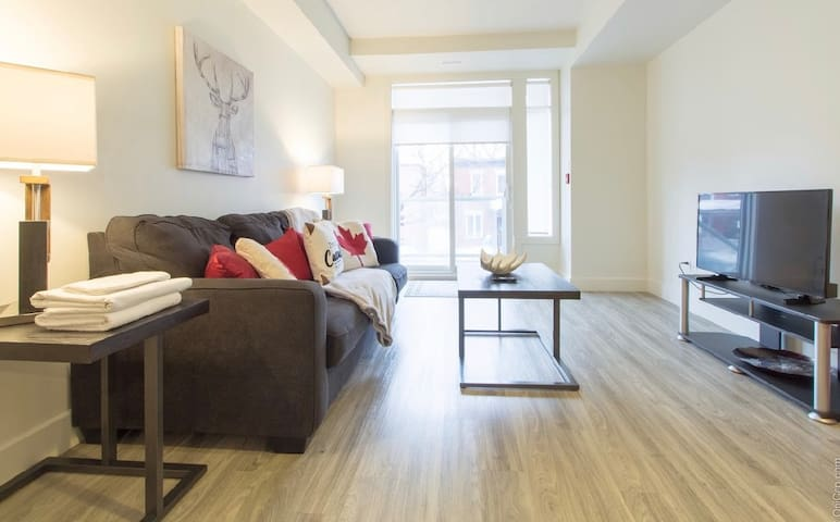 All Canadian Experience- Brand New Downtown Condo