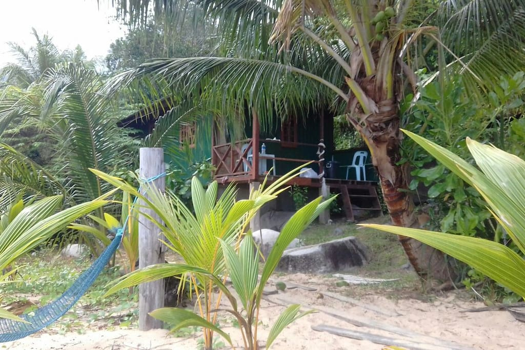 Surrounded by jungle, river and beach!