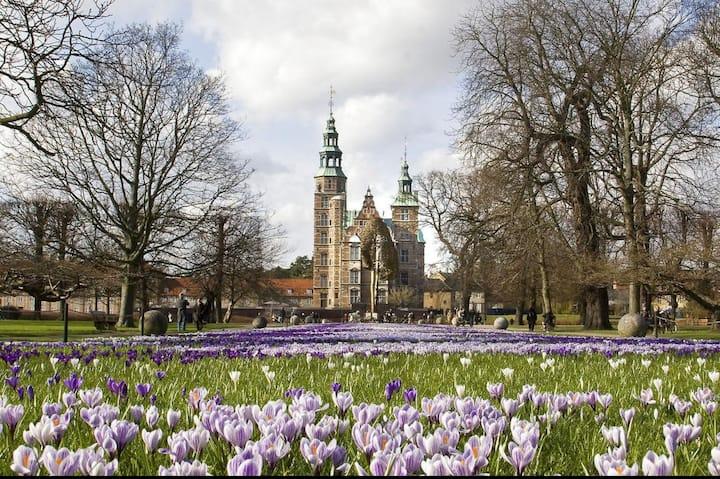 Best Copenhagen Location