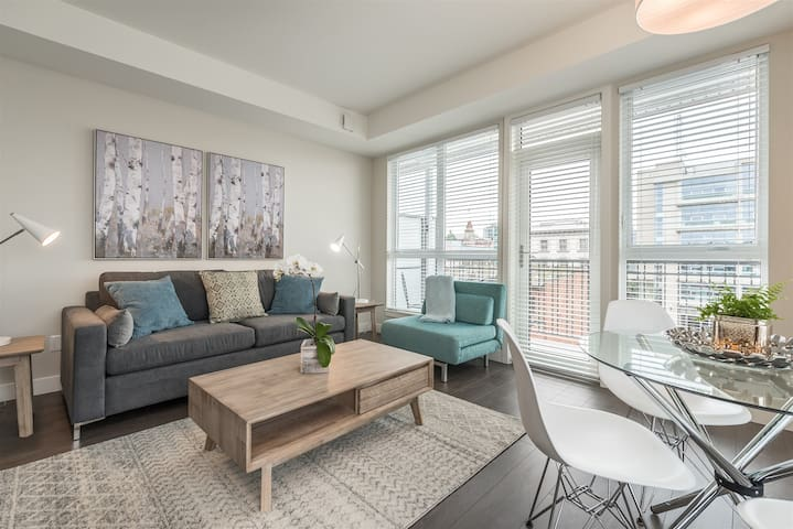 Brand New Modern 1 BR in historic Chinatown