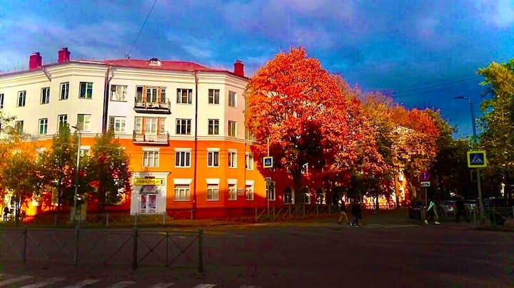 Просторная квартира у Новгородского Кремля