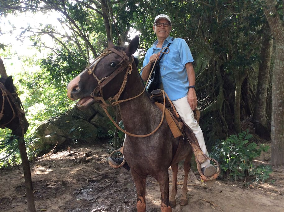 Cuban horse with an American rider! Excellent tour set up by host of the house.