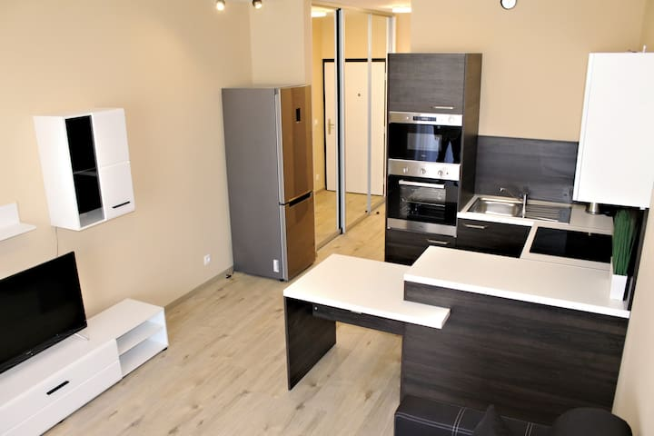 Luxury apartment which is equipped with the best..