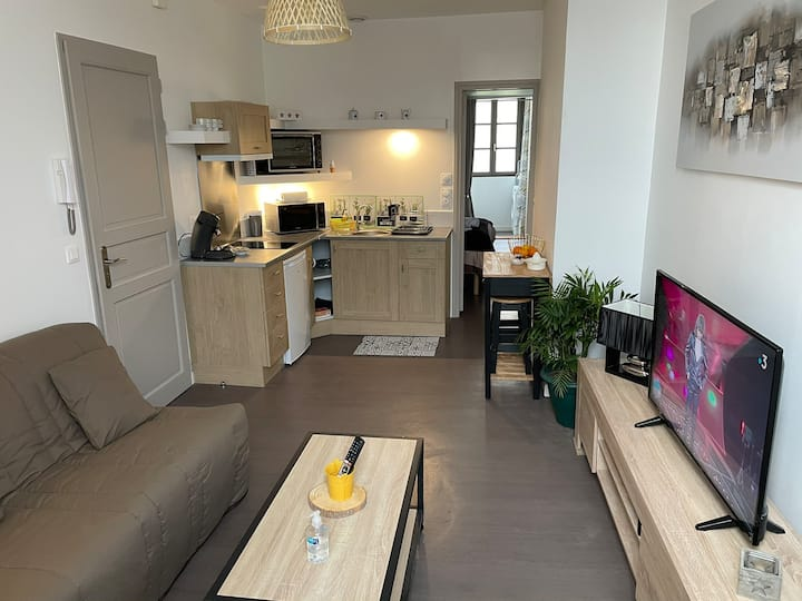 logement entier 33 m2 à Pau( 700 mètres  gare)