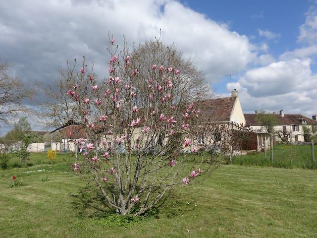 Chambre d'hôte en Bourgogne  proche Vézelay