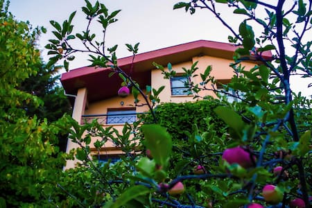 Villa de Calma - Polidendro - Vila