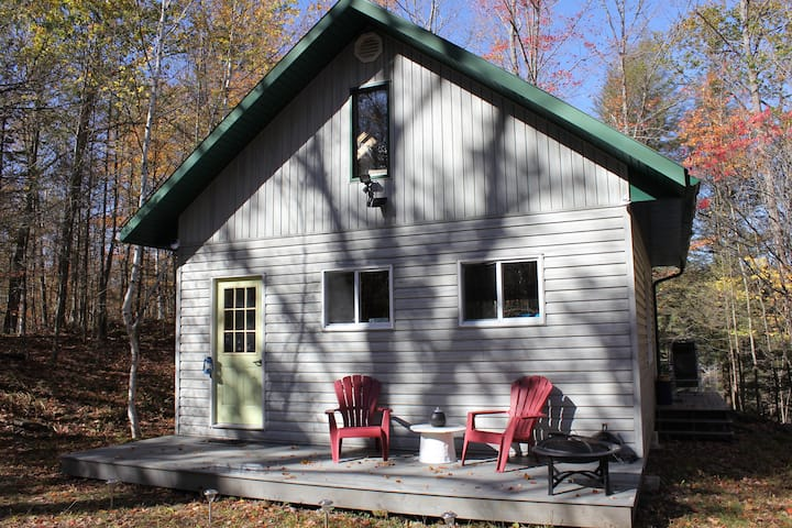 All Season Secluded Cabin Rental in the Woods