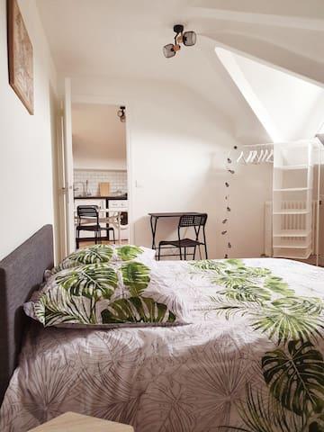 Le Kiwitier  :  appartement fraîchement rénové