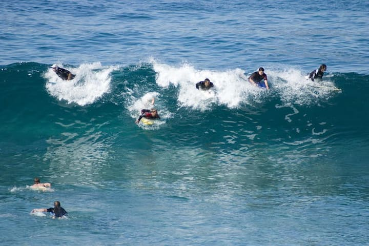 Bronte Beach - world famous surf beach. Also surf at nearby Bondi, Tamarama and Coogee beaches.  All are walking distance from the apartment.