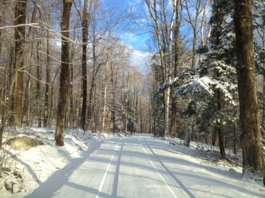 In winter, X-country ski, snow shoe--miles of trails.