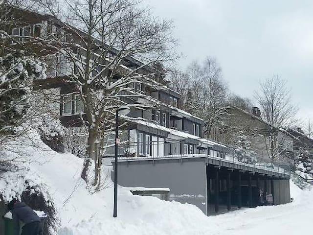 Mooi appartement in het betoverende Sauerand - Winterberg - Apartmen