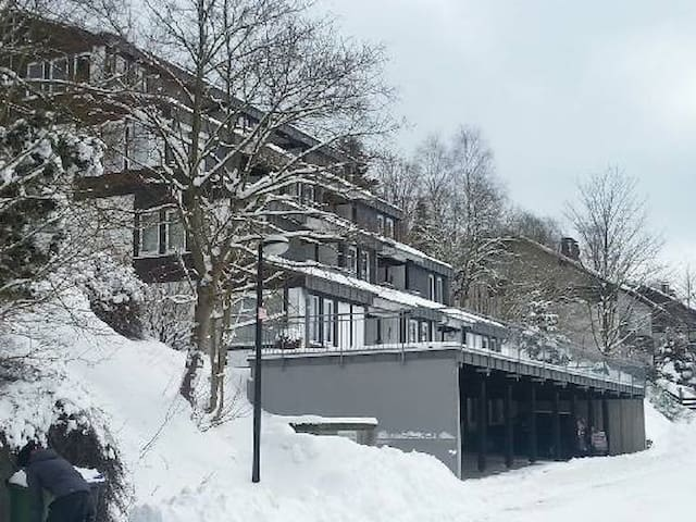 Mooi appartement in het betoverende Sauerand - Винтерберг - Квартира