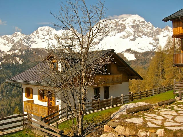 Discover the charm of the Dolomites - Zoldo Alto - Apartment