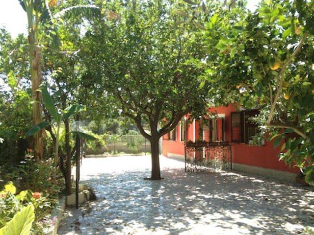 TROPEA VACANZA IN RELAX(bilocale 1) - Tropea - Casa