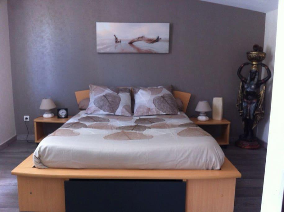 Chambre avec lit 2 places, 1 armoire et placards...