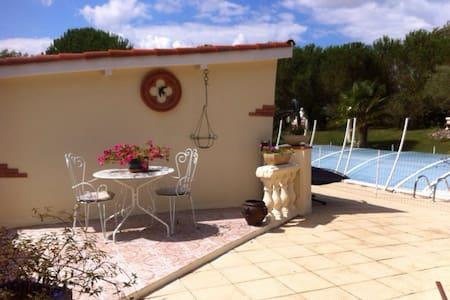 Charmante maison avec piscine - Empeaux