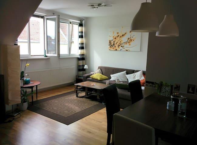 Charming apartement near Schönbrun - 維也納 - 公寓