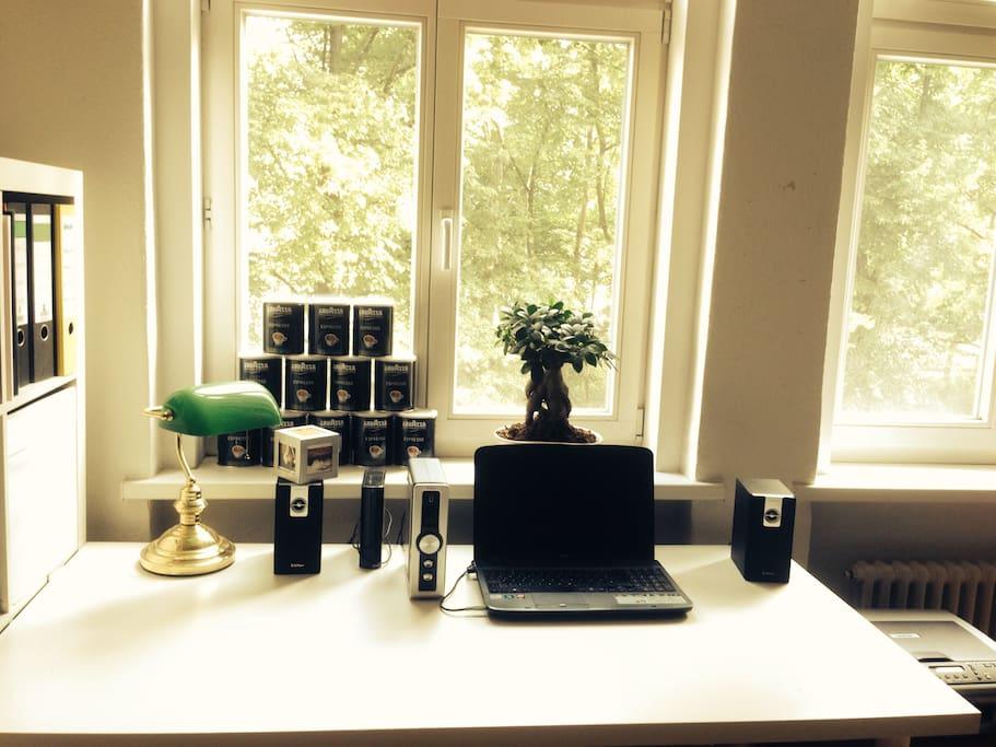 Schreibtisch mit Blick ins Grüne