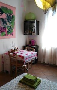 Camera a Bologna + bicicletta - Bologna - Wohnung