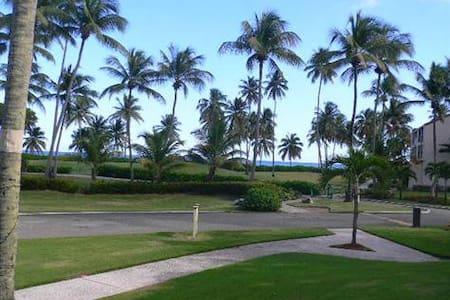 Beach & Golf 2BR 2BA apt sleeps 5-6 - Humacao - Appartement