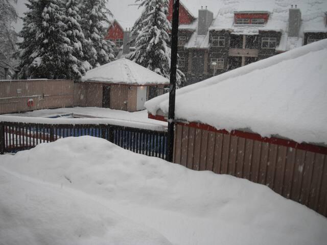 50cm new snow overnight!