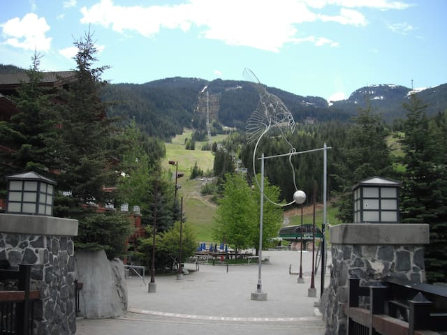 Summer view of the gondola and mountain.