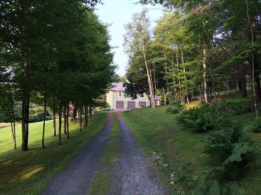 Driveway to the Carriage House