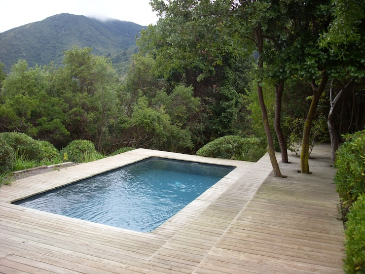 wonderful house in Zapallar Chile