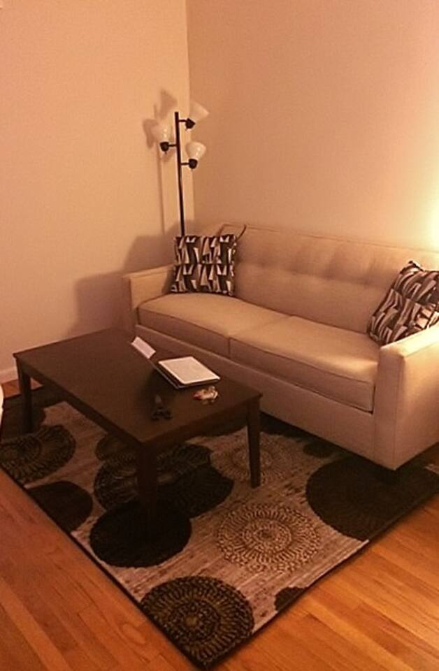 Livingroom - converts to a bed