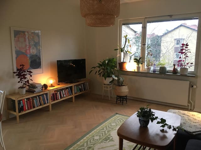 Beautiful and light two room apartment