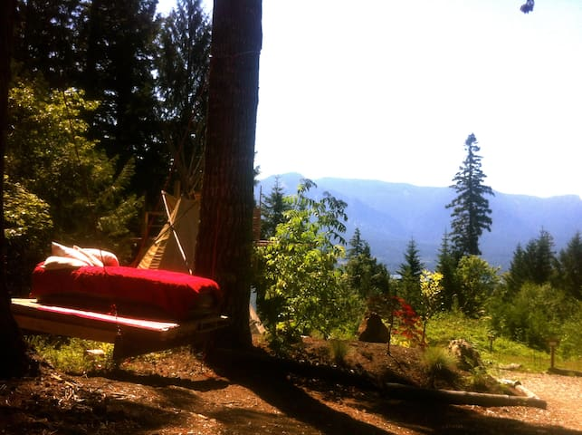 This is a swinging bed in the trees.