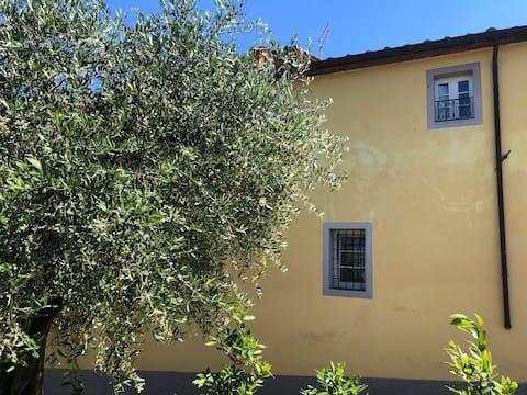 La casa nell'oliveto sulle colline di lucca