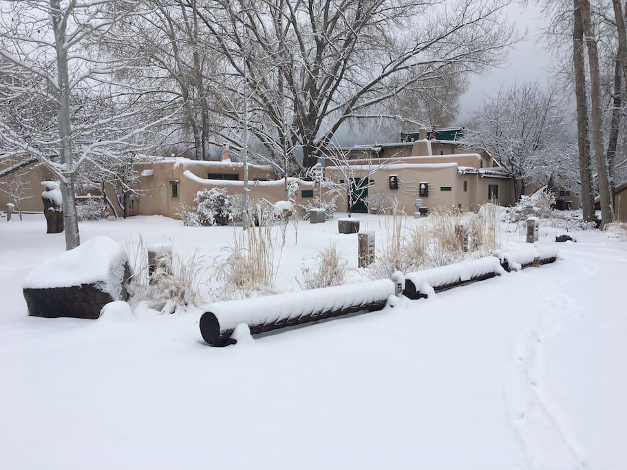 A snow-covered Lumina Gardens