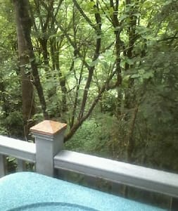 The TreeHouse Too 2 BR Apt/Flat Bed & Breakfast - West Linn