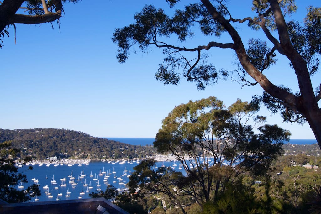 Pittwater to the North, Pacific Ocean to the East!