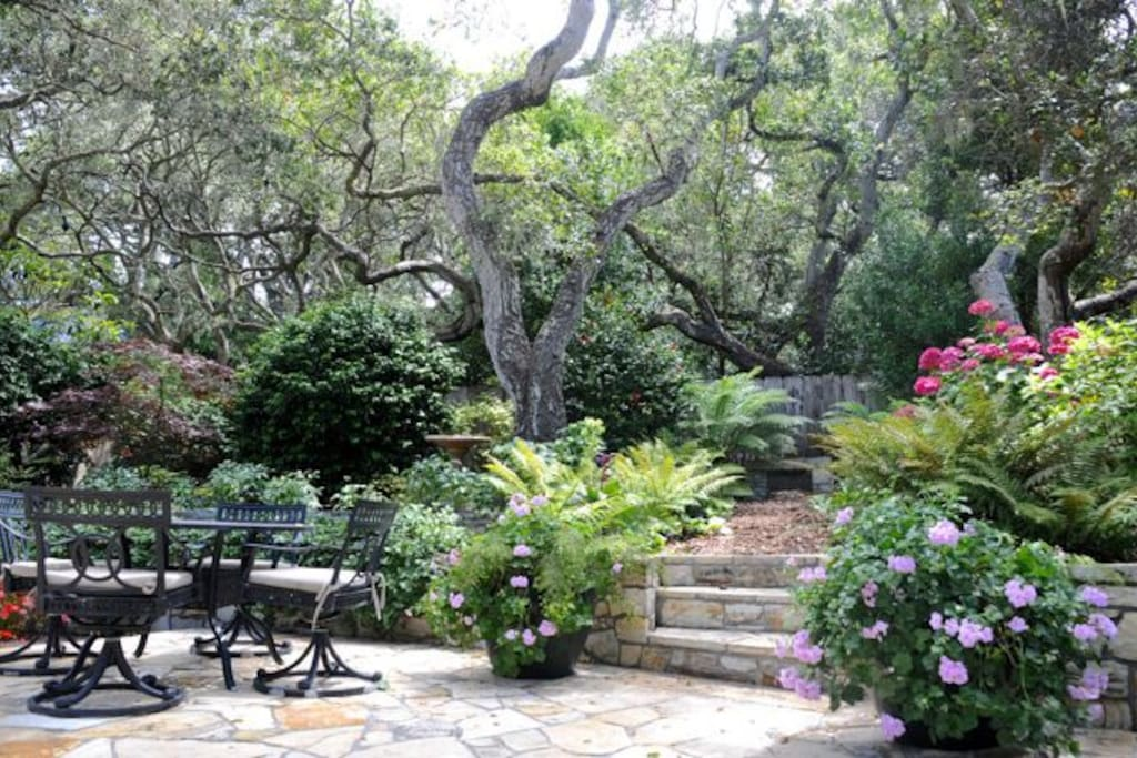 Outdoor garden patio with beautiful tree Canapé