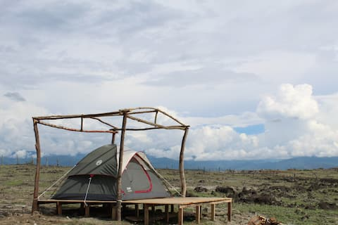 Pachingo Hostal Camping