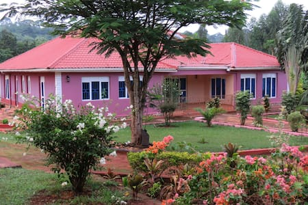 Nature-Filled  & Jubilant villa in Buikwe/Jinja
