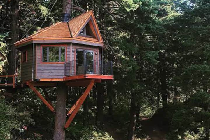 Tree house of the himalayas