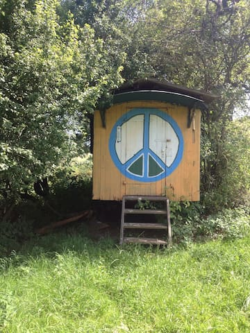 Charming Lakeside Circus Wagon in the countryside - biebertal - Bed & Breakfast