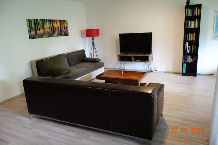 Large 2 room Appartment in the city center (75 m2)