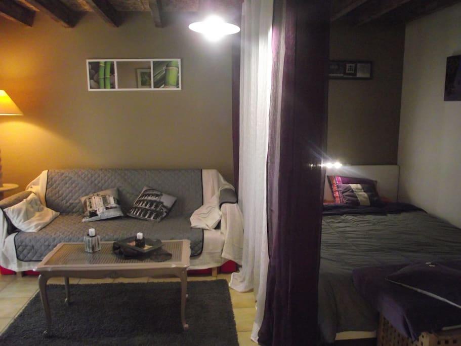 Un salon , tc écran plat et coin nuit , lit en 160/200